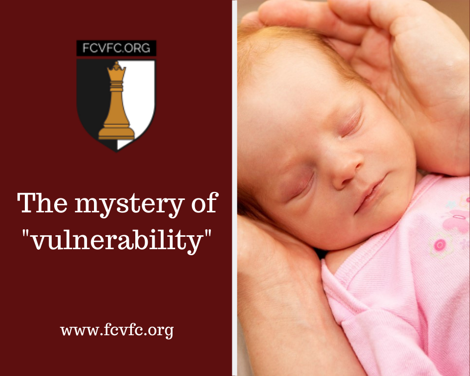 """The mystery of """"vulnerability"""""""